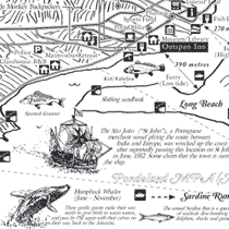 Port St Johns Map